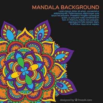 Fondo de Mandala