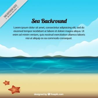 Fondo de mar con orilla y estrellas de mar