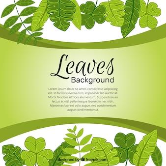 Fondo de naturaleza de hojas verdes dibujadas a mano