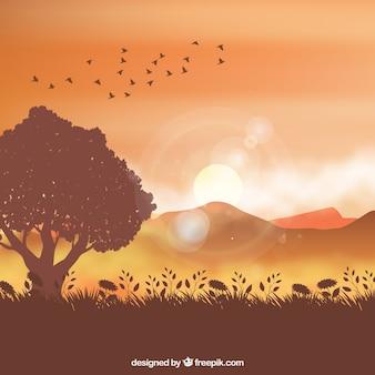 Fondo de paisaje a contraluz