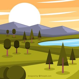 Fondo de paisaje de pinos al atardecer