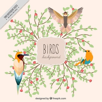 Fondo de pájaros de acuarela con ramas