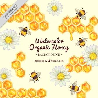 Fondo de panal pintado a mano con abejas