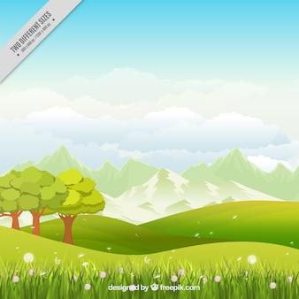 Fondo de pradera con árboles y flores