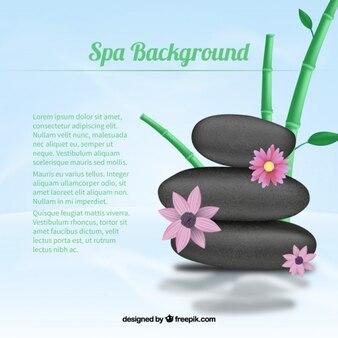 Fondo de spa con flores y piedras