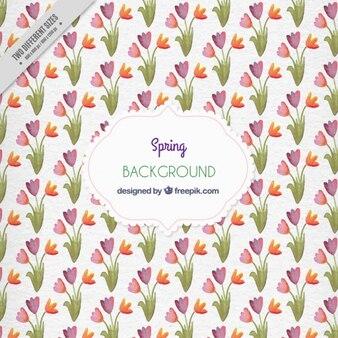 Fondo de tulipanes de acuarela