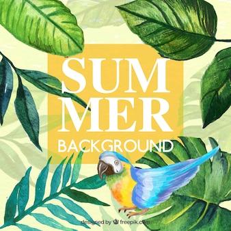 Fondo de verano con temática tropical