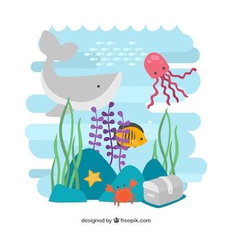 Fondo de vida salvaje marina