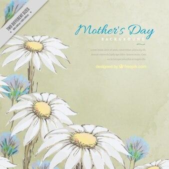 Fondo del día de la madre de margaritas dibujadas a mano