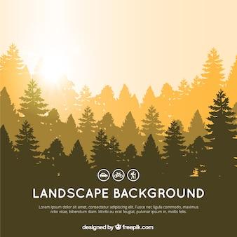 Fondo del paisaje