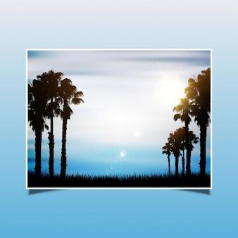 Fondo del verano con siluetas de palmeras