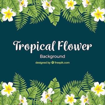 Fondo elegante de flores tropicales en acuarela