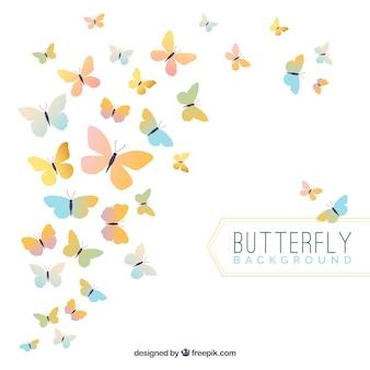 Fondo elegante de mariposas