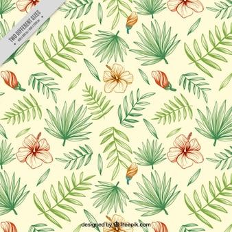 Fondo floral dibujados a mano con hojas de palmera