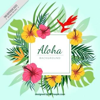 Fondo florido de aloha