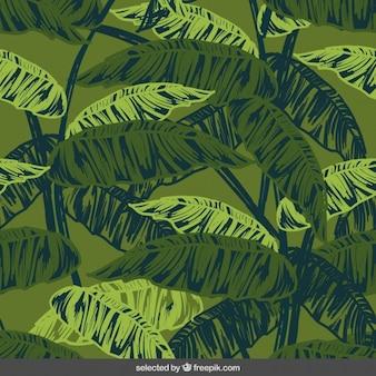 Fondo natural con hojas dibujadas a mano
