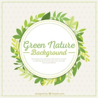 Fondo natural verde con hojas