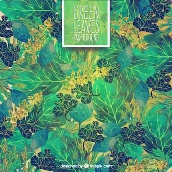 Fondo pintado a mano de hojas verdes