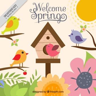 Fondo primaveral colorido con pájaros
