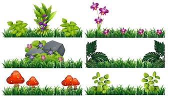 Fondo transparente con flores en el jardín