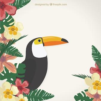 Fondo tropical con un tucán
