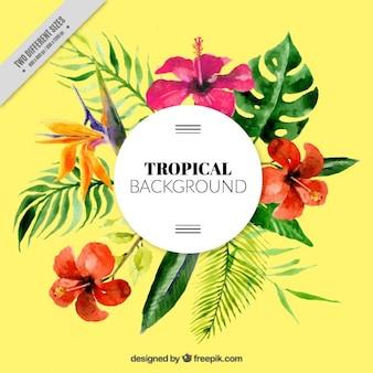 Fondo tropical de acuarela y hojas