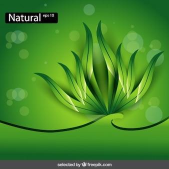 Fondo verde con arbustos