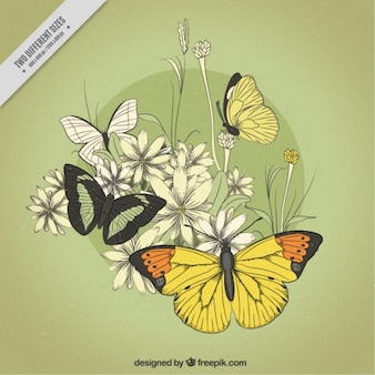 Fondo verde con mariposas y flores