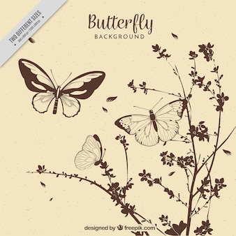 Fondo vintage de flores y mariposas dibujadas a mano
