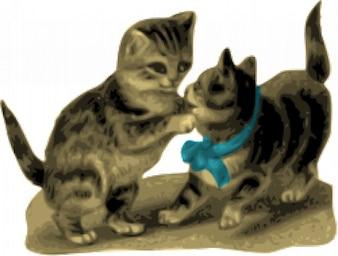 gatitos, uno con cinta azul