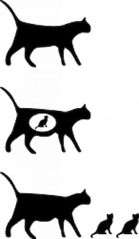 Gato iconos