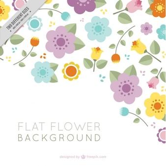 Genial fondo de flores planas