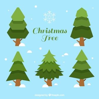 Geométricos pinos para navidad