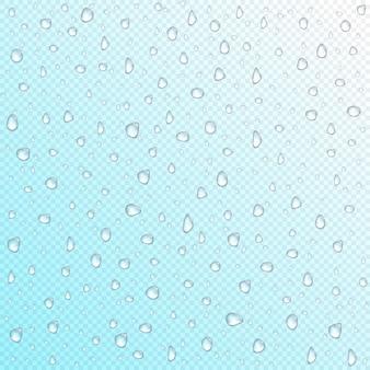 Gotas de agua sobre fondo transparente