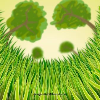 Hierba verde con árboles borrosos de fondo