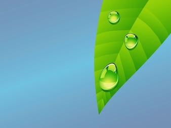 Hoja realista con las gotas de lluvia