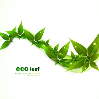Hojas verdes de ecología