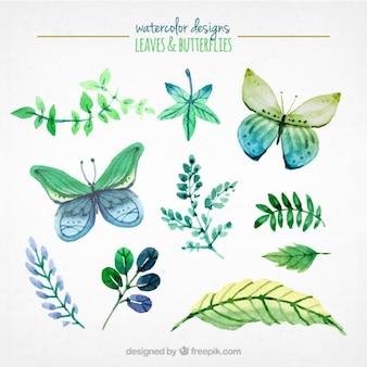 Hojas y mariposas de acuarela