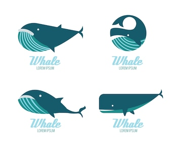Iconos de las ballenas. elementos de diseño planos. ilustración vectorial
