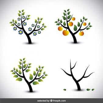 Ilustración de árbol en diferentes estaciones
