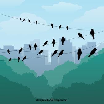 Ilustración de siluetas de pájaros