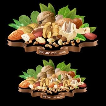 Ilustración vectorial mezcla de diferentes tipos de frutos secos