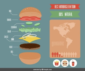 Infografía colorido de la hamburguesa