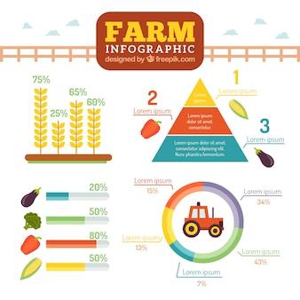 Infografía granja en estilo plano