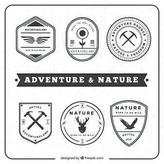 Insignias de aventura y naturaleza en un estilo vintage