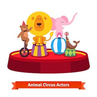 Jugando animales de circo muestran en arena roja