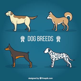 Las razas de perros de la historieta