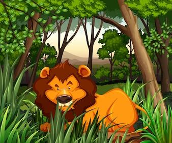 León viviendo en el bosque oscuro ilustración