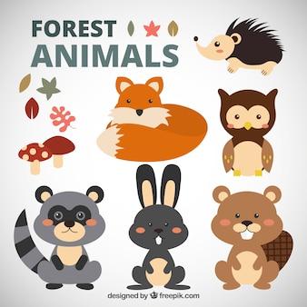 Linda colección de animales del bosque