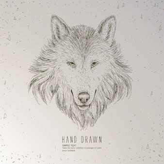 Lobo dibujado a mano